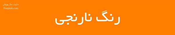 رنگ نارنجی - سایت ساز و فروشگاه ساز پوپش