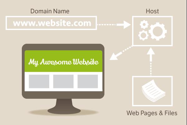رابطه بین هاست و دامنه وب سایت